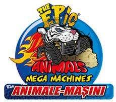 Animale-masini