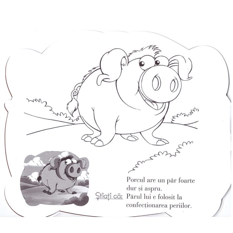 Lipeste Si Coloreaza Animalute Dragute Porcul