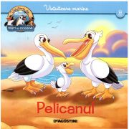 Animale marine nr.8 - Pelicanul