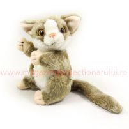 Lumea Animalutelor Nr.11 - Lemurul