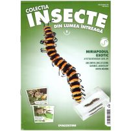 Insecte din lumea intreaga nr.8 - Miriapodul exotic