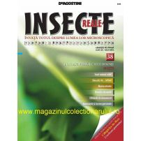 Insecte reale nr.38 - Muste