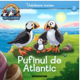 Animale marine nr.21 - Pufinul de Atlantic